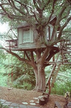Tree house with a swing!  Loads of fun for the kids.  #treehouse #designideas http://homechanneltv.com