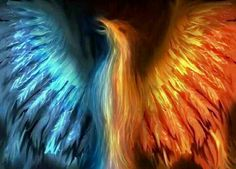 Mythology images Phoenix wallpaper and background photos . Phoenix Art, Phoenix Rising, Phoenix Images, Bird Pictures, Pictures Images, Fantasy Creatures, Mythical Creatures, Mythical Birds, Strange Creatures