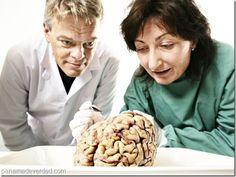 Premio Nobel de Medicina 2014: ¿cómo está representado el espacio en nuestro cerebro? - http://panamadeverdad.com/2014/10/14/premio-nobel-de-medicina-2014-como-esta-representado-el-espacio-en-nuestro-cerebro/