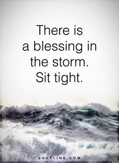 Quotes about Surviving the Storm There is a blessing in the storm. Sit tight.