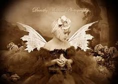 Image result for dorothy wallace photography
