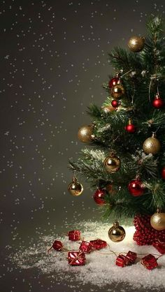 Are you looking for ideas for christmas aesthetic?Browse around this website for cool Christmas ideas.May the season bring you joy. Christmas Scenes, Christmas Mood, Noel Christmas, Christmas Greetings, Christmas Ideas, Christmas Gifts, Christmas Outfits, Christmas Quotes, Christmas Sweaters