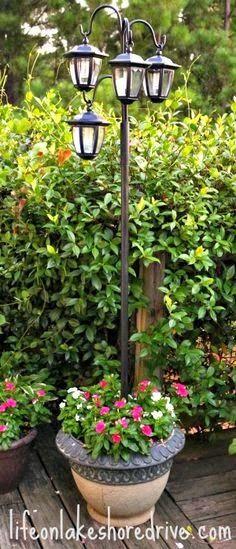 DIY Garden 2