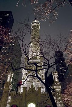 Chicago Water Tower at Christmas, the lighting of the town and Christmas parade is a beautiful, fun thing to see. Chicago City, Chicago Skyline, Chicago Illinois, Chicago Today, Chicago Bears, Chicago Christmas, Chicago Winter, Chicago Water Tower, Places Around The World
