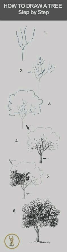 40 Easy Step By Step Art Drawings To Practice Comment dessiner un arbre (un feuillu) ? Drawing Lessons, Drawing Techniques, Drawing Tips, Drawing Sketches, Drawing Ideas, Drawing Art, Sketch Ideas, Sketch Inspiration, How To Draw Sketches