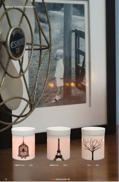 Scentsy Fall/Winter 2013 collection