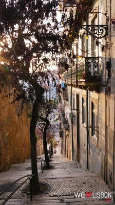 Lisbon stairs and alleys - Lisbon worth a visit, you can find everything there for a perfect holiday: history, nice people, good food, beaches, night-life, romance, fado...