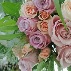 great vancouver florist Beautiful soft pink and peachy colors roses with the grass ornamental. #valleyflorals #vancitybuzz #roses #pink #peach #soft #grass by @valleyflorals  #vancouverflorist #vancouverflorist #vancouverwedding #vancouverweddingdosanddonts