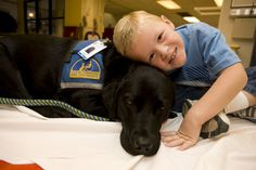 Ansley, MD is a 5 yr old Lab/Golden Retriever Mix medical dog that works full time at Nationwide Children's Hospital in Columbus, Ohio providing animal-assisted therapy (AAT) to kids with spine or neurological disorders.