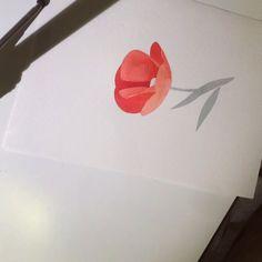 ❤️ #poppy #sashaunisex #watercolor