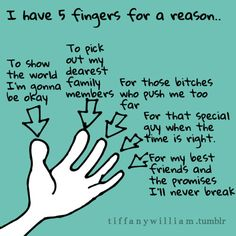 I have 5 fingers for a reason