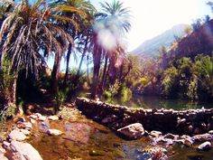 Paradise Valley, Immouzer