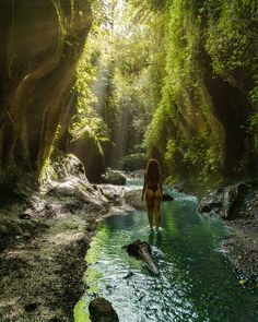 Tukad Cepung Waterfall Bali {The Unforgettable Ubud Secret Gem} Places To Travel, Places To Visit, Famous Waterfalls, Les Cascades, Bali Travel, Fantasy Landscape, Ubud, Nature Scenes, Travel Around The World