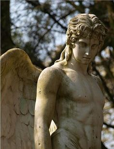 The angels are the dispensers and administrators of the divine beneficence toward us; they regard our safety, undertake our defense, direct our ways, and exercise a constant solicitude that no evil befall us. ~ John Calvin