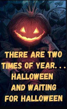 Halloween Countdown, Halloween Images, Halloween Quotes, Outdoor Halloween, Halloween Horror, Holidays Halloween, Spooky Halloween, Vintage Halloween, Halloween Crafts