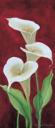 Calla on burgundy III Canvas Art - Gertrud Schweser x Calla Lillies, Calla Lily, Art Floral, Lily Painting, Beautiful Paintings, Watercolor Flowers, Painting Inspiration, Flower Art, Beautiful Flowers