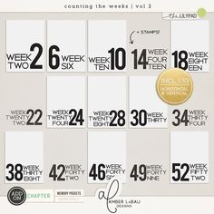 COUNTING THE WEEKS VOL 2 | by Amber LaBau Contains: 53 cards sized 3x4 in both orientations w/ and w/o bleed