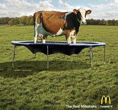 Pubblicità divertenti e geniali: ottime idee per cartelloni pubblicitari