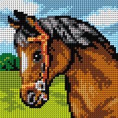Schemat Koń