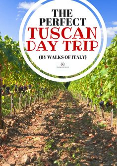 Want to see the best in Tuscany without having to navigate it yourself? We have…