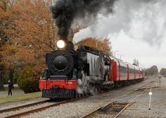 Foto: Midwinter Xmas Express Masterton, New Zealand  With the trees still bearing some colour from autumn, Wab794 leaves Masterton northbound with Feilding Steam Rail's Midwinter Xmas Dinner Express on Sunday, 19 June 2016.  I heard from one of crew, the next day, that they struggled to get the train up the grade going out of Masterton - it must've been a pretty good xmas meal that the passengers enjoyed! ;-)   For +SteamySunday, curated by +Paul Pavlinovichand +Shelly Gunderson…