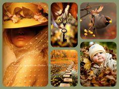 '' Autumn is coming ''... By Reyhan Seran Dursun