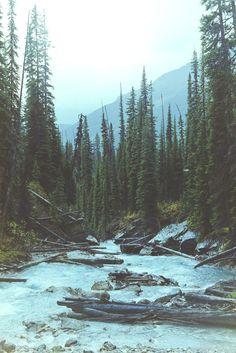 man-and-camera: Yoho National Park, BC ➾ Luke...
