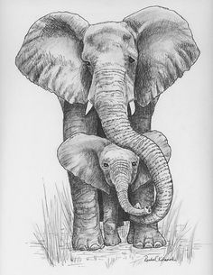Pen and Ink drawing of mama and baby elephant - Print reproduction