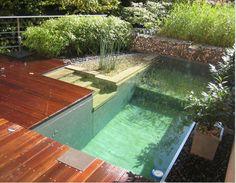 Swimming ponds