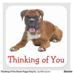 Thinking of You Boxer Puppy Dog Greeting Sticker  #thinkingofyou #stickers #dogs #boxerdogs