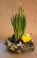 Výsledok vyhľadávania obrázkov pre dopyt veľkonočné dekorácie na stôl Plants, Flora, Plant, Planting
