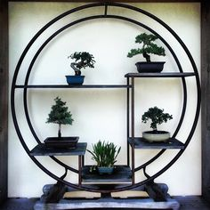 19 Best Serenity Images In 2019 House Plants Decor