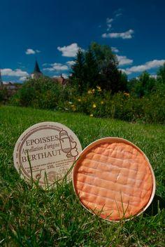 fav cheese