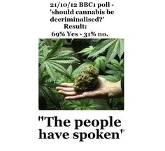 cd2df50dc8f During the show, the BBC ran a viewers poll asking whether cannabis should  be decriminalized. The result showed an overwhelming majority in favor, ...