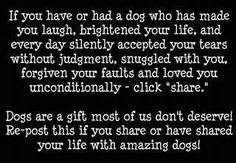 Dogs are a gift