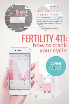 Fertility 411: how t