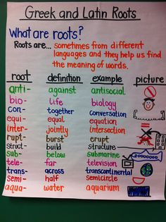 Greek and Latin Roots- I hope to teach them next year.