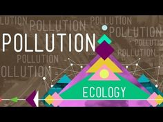 GREAT VIDEO ON HOW POLLUTION AFFECTS ECOSYSTEMS AND OUR OWN BODIES.  Hank talks about the last major way humans are impacting the environment in this penultimate episode of Crash Course Ecology. Pollution takes many forms - from the simplest piece of litter to the more complex endocrine distruptors - and ultimately, humans are responsible for it all.