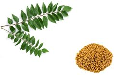 Remedies For Hair Hair Care: 12 Home Recipes With Fenugreek (Methi) Seeds For Hair Growth. Thinning Hair Remedies, Hair Remedies For Growth, Home Remedies For Hair, Hair Growth Tips, Recipe With Fenugreek, Fenugreek For Hair, Ayurvedic Hair Care, Hair Pack, Natural Hair Care Tips
