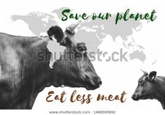 Find Save Our Planet Eat Less Meat stock images in HD and millions of other royalty-free stock photos, illustrations and vectors in the Shutterstock collection. Thousands of new, high-quality pictures added every day. How To Eat Less, Our Planet, Planets, Vectors, Royalty Free Stock Photos, Illustrations, Meat, Artist, Pictures