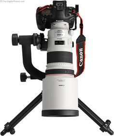 Canon EF 300mm f/2.8 L IS II USM Lens.  Maybe a 2nd mortgage on the house??? :)