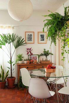 5 Motivos para Decorar com Plantas • Trazer a vibe da natureza para dentro de casa é fundamental para manter nossa sanidade mental #plantas