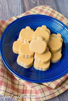 No Bake Pumpkin Coconut Candy | Sugar Free | Paleo | Dairy Free | Low Carb