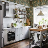stainless steel IKEA kitchen cabinets in kitsch kitchen Ikea Small Kitchen, Ikea Kitchen Storage, Kitchen Sets, Kitchen Layout, New Kitchen, Small Kitchens, Narrow Kitchen, Compact Kitchen, Mini Kitchen