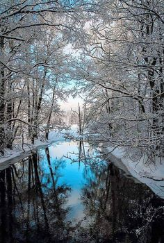 What We Get From Joining Or Visiting A Nature Photography Website – PhotoTakes Winter Szenen, Winter Magic, Winter Photography, Landscape Photography, Nature Photography, Winter Pictures, Nature Pictures, Beautiful World, Beautiful Places