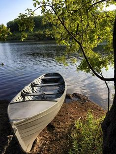 size: Photographic Print: A Rowing Boat on Lough Oughter in Cavan by Chris Hill : Travel Outdoor Life, Outdoor Fun, Walking In Sunshine, Lake Art, Beach Landscape, Ways Of Seeing, Rowing, Ireland Travel, Yosemite National Park