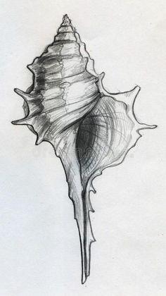 Pencil Art Drawings, Art Drawings Sketches, Animal Drawings, Pencil Sketches Of Nature, Sketches Of Hands, Simple Sketches, Pencil Sketching, Landscape Sketch, Pen Art
