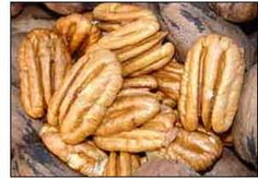 Caring for Pecan Trees