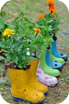 Super fun, get old rain boots from thrift stores but drill hole in bottom for drainage