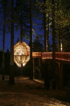 This is the Yellow Treehouse--and is for real, a restaurant by New Zealand based Pacific Environments Architects Ltd. (PEL). The Yellow Tree House settles into the highest redwoods and is made up of plantation poplar slats and milled, on-site redwood balustrading. It is visual feast of natural light.